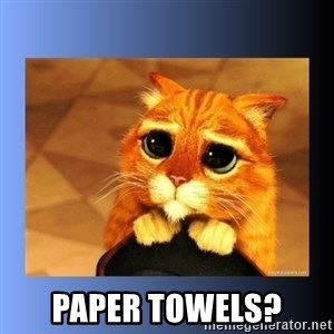 puss in boots eyes 2 -  Paper Towels?