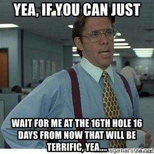 That would be great - yea, if you can just wait for me at the 16th hole 16 days from now that will be terrific, yea....