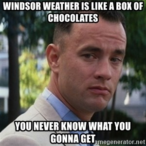 forrest gump - Windsor weather is like a box of chocolates You never know what you gonna get