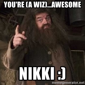 Hagrid - You're (a Wiz)...Awesome Nikki :)
