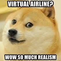 dogeee - VIRTUAL AIRLINE? WOW SO MUCH REALISM
