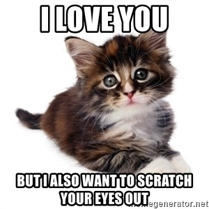 fyeahpussycats - I love you but I also want to scratch your eyes out