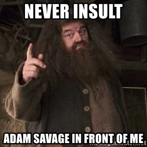 Hagrid - never insult  Adam Savage in front of me