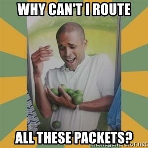 Why can't I hold all these limes - Why can't I Route All these packets?