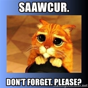 puss in boots eyes 2 - SAAWCUR. Don't Forget. Please?