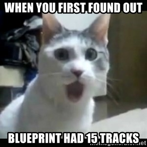 Surprised Cat - When you first found out Blueprint had 15 tracks