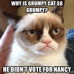 Grumpy Cat 2 - Why is grumpy cat so grumpy? He didn't vote for Nancy