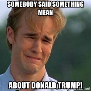 Crying Man - Somebody said something mean about Donald Trump!