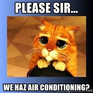 puss in boots eyes 2 - please sir... we haz air conditioning?