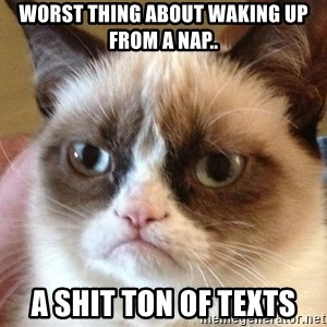 Angry Cat Meme - worst thing about waking up from a nap.. a shit ton of texts