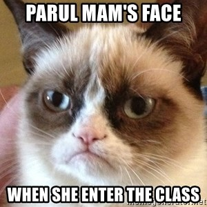 Angry Cat Meme - parul mam's face when she enter the class