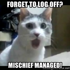 Surprised Cat - Forget to Log Off? Mischief Managed!