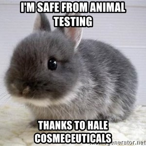 ADHD Bunny - I'm safe from animal testing thanks to hale cosmeceuticals