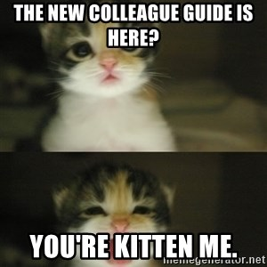 Adorable Kitten - The New Colleague Guide is here? you're kitten me.
