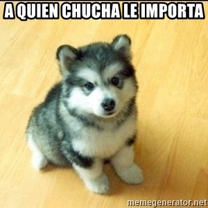 Baby Courage Wolf - a quien chucha le importa