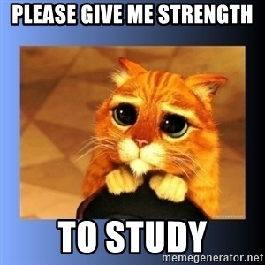 puss in boots eyes 2 - Please give me strength  to study