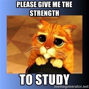 puss in boots eyes 2 - please give me the strength to study
