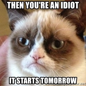 Angry Cat Meme - Then you're an idiot it starts tomorrow