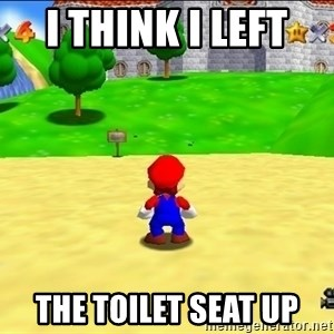 Mario looking at castle - i think i left  the toilet seat up