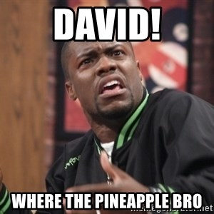 kevin hart bro - David! Where the Pineapple Bro