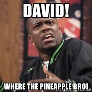 kevin hart bro - David! Where the Pineapple Bro!
