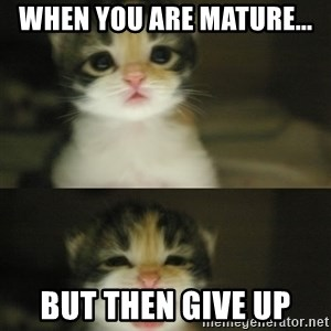 Adorable Kitten - When you are mature... but then give up