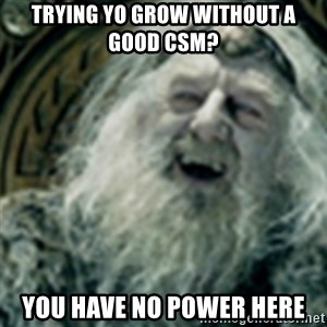 you have no power here - trying yo grow without a good CSM? you have no power here