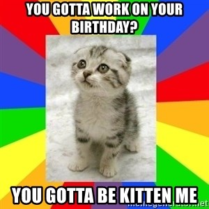 Cute Kitten - YOU GOTTA WORK ON YOUR BIRTHDAY? YOU GOTTA BE KITTEN ME