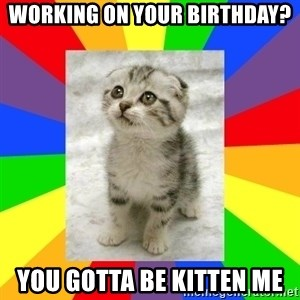 Cute Kitten - Working on your birthday? you gotta be kitten me