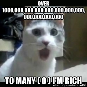Surprised Cat - over 1000,000,000,000,000,000,000,000,000,000,000,000 to many ( 0 ) i'm rich