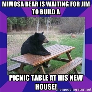 waiting bear - Mimosa Bear is waiting for Jim to build a picnic table at his new house!