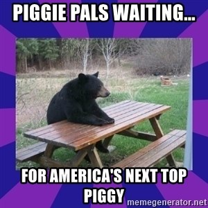 waiting bear - piggie pals waiting... for America's Next Top Piggy