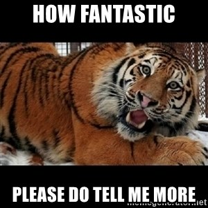 Sarcasm Tiger - HOW FANTASTIC PLEASE DO TELL ME MORE