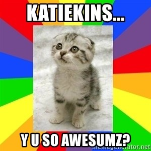 Cute Kitten - Katiekins... Y U So awesumz?