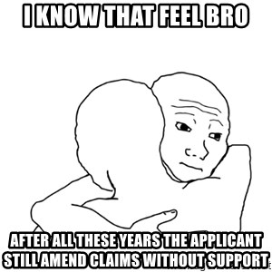 I know that feel bro blank - I know that feel bro After all these years the applicant still amend claims without support