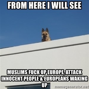 Roof Dog - From here I will see muslims fuck up Europe, attack innocent people & europeans waking up