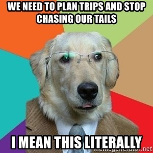 Business Dog - We need to plan trips and stop chasing our tails I mean this literally