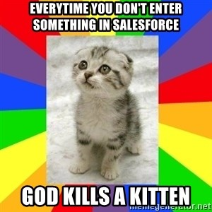 Cute Kitten - Everytime you don't enter something in salesforce God kills a kitten
