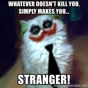 JokerCat - Whatever doesn't kill you, simply makes you... STRANGER!