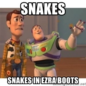 Toy story - Snakes Snakes in Ezra Boots