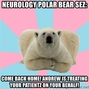 Perfection Polar Bear - NEUROLOGY POLAR BEAR SEZ: COME BACK HOME! ANDREW IS TREATING YOUR PATIENTZ ON YOUR BEHALF!