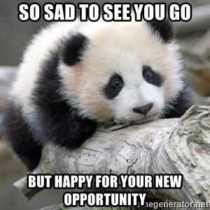 sad panda - so sad to see you go but happy for your new opportunity