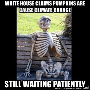 Still Waiting - white house claims pumpkins are cause climate change still waiting patiently