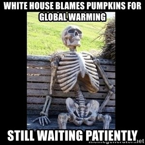 Still Waiting - white house blames pumpkins for global warming still waiting patiently