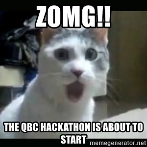 Surprised Cat - ZOMG!! THE QBC HACKATHON IS ABOUT TO START