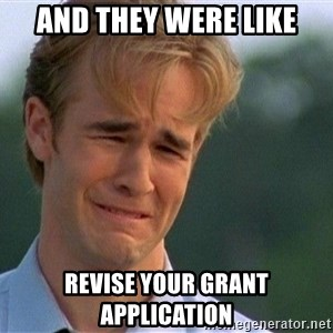 Crying Man - And they were like revise your grant application