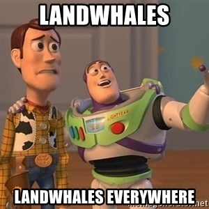 Anonymous, Anonymous Everywhere - landwhales landwhales everywhere