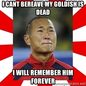 Super Asian Problems - I cant bereave my goldish is dead i will remember him forever