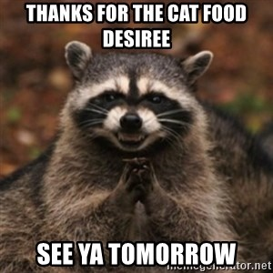 evil raccoon - thanks for the cat food desiree see ya tomorrow