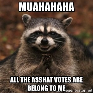 evil raccoon - muahahaha all the asshat votes are belong to me